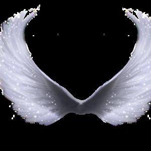 Default wing 4 by paradise234 d5l66we