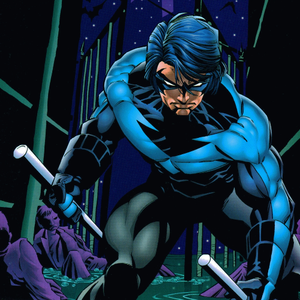Default nightwing project image 500x500