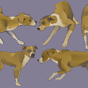 Default dogsketches by perrichan d9qeg2p