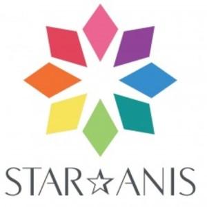 Default star anis logo 300x237