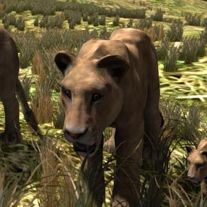 Default lions