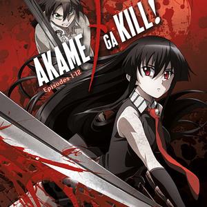 Default 814131014276 anime akame ga kill collection 1 dvd