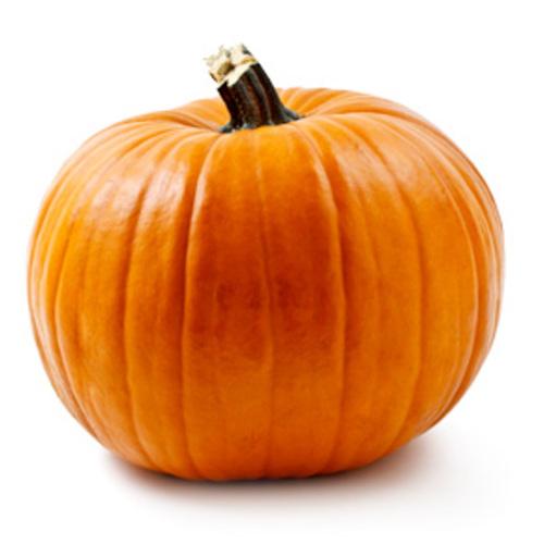 Default yogurt pumpkin img22
