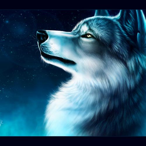 Default ice wolf by y esk d9b1y7u