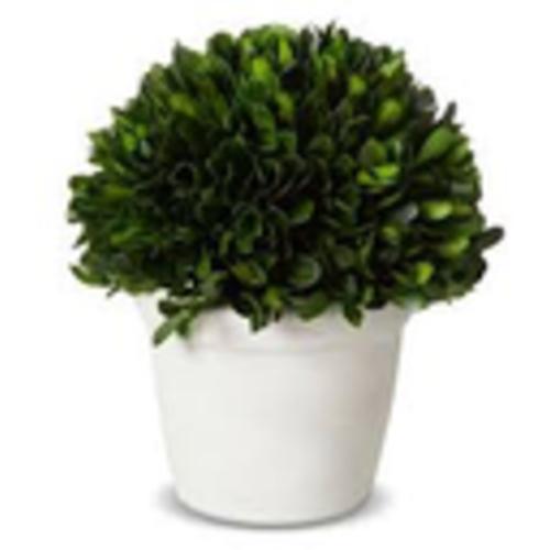Default bush