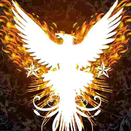 Default phoenix1