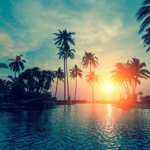 Default sunset 2880x1800 palm trees tropical beach hd 6500