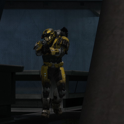 Default yellowjacket