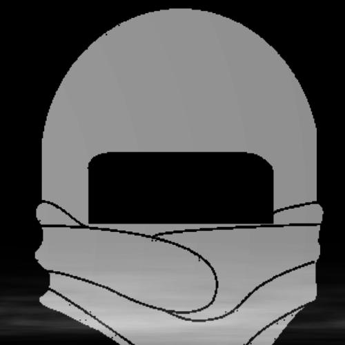 Default ninja outro wip
