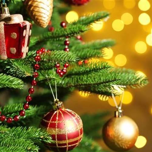 Default christmas tree today tease 1 151201 dd6ec0167e769c87de32fd740c83f70a.today inline large