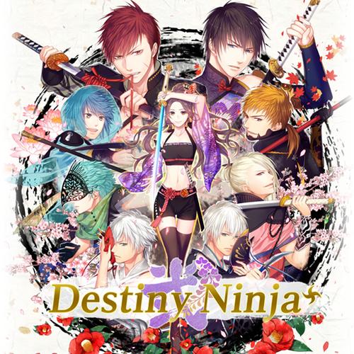Default destiny ninja 2