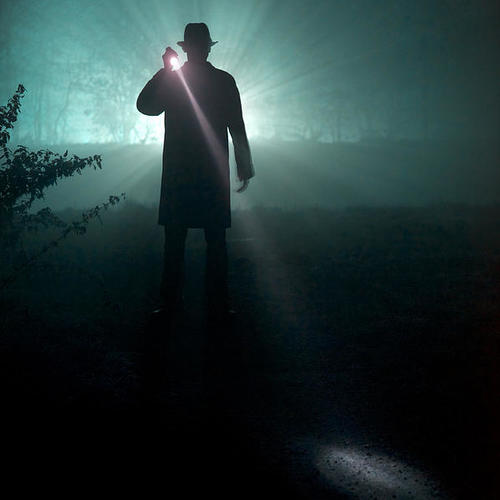 Default man with flashlight lee avison
