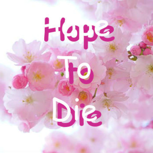 Default hope to die cover