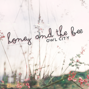 Default honey and the bee owl city 36881651 500 500