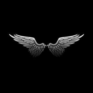 Default aoh wings