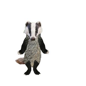 Default badger