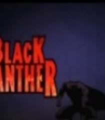 Default black panther