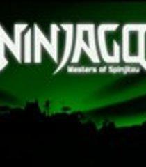 Default lego ninjago masters of spinjitzu