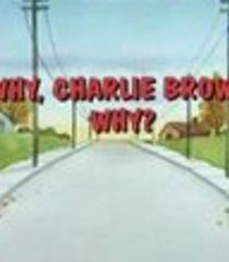 Default why charlie brown why