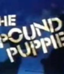 Default pound puppies 1985