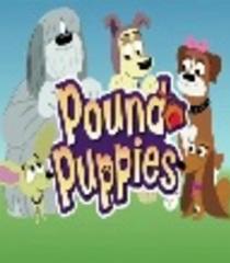 Default pound puppies 2010