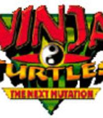 Default ninja turtles the next mutation