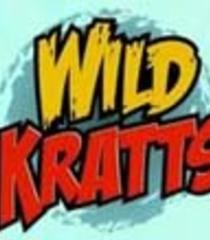 Default wild kratts
