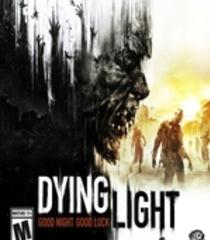 Default dying light