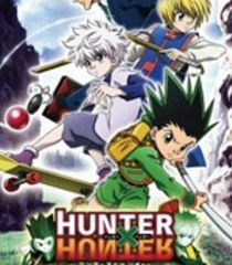 Default hunter x hunter wonder adventure
