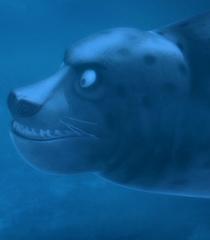 Default leopard seal 4