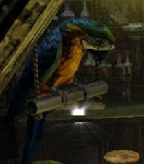 Default jose parrot