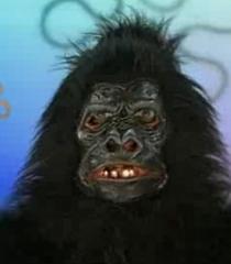Default gorilla 425ba1c0 d634 4dfd 91f6 6af95371a9a3