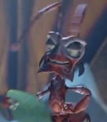 Default ant council 1