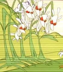 Default daisies