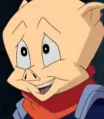 Default pinkster pig