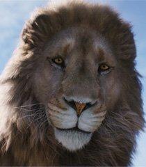 Default aslan