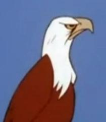 Default bald eagle