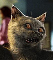 Default russian kitty