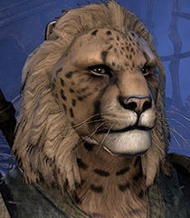 Default khajit male