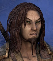 Default bosmer male