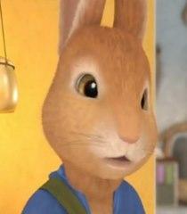 Default peter rabbit