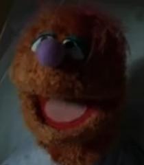 Default am muppet ex ray