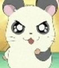 Default panda kun