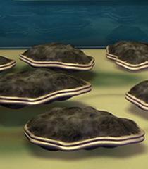 Default oyster 3d35e52d 06e1 418e 9431 93e4ce170e25