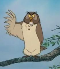 Default owl f9620506 b9d5 4a8e b681 2cea4bdbdde6