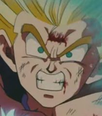 Default gohan son young