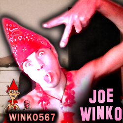 Youtubeicon2017joewinko