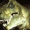Thumb t rex