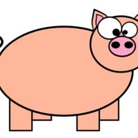 Default derpy pig