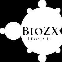 Default white logo